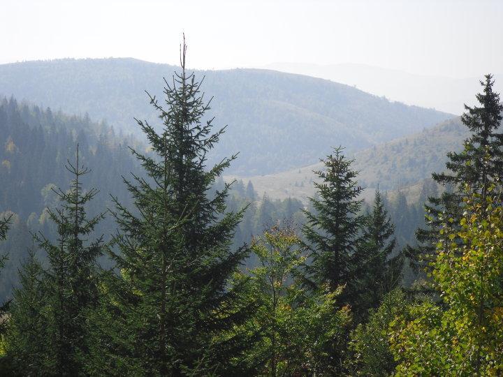 Pogled s Bunarića