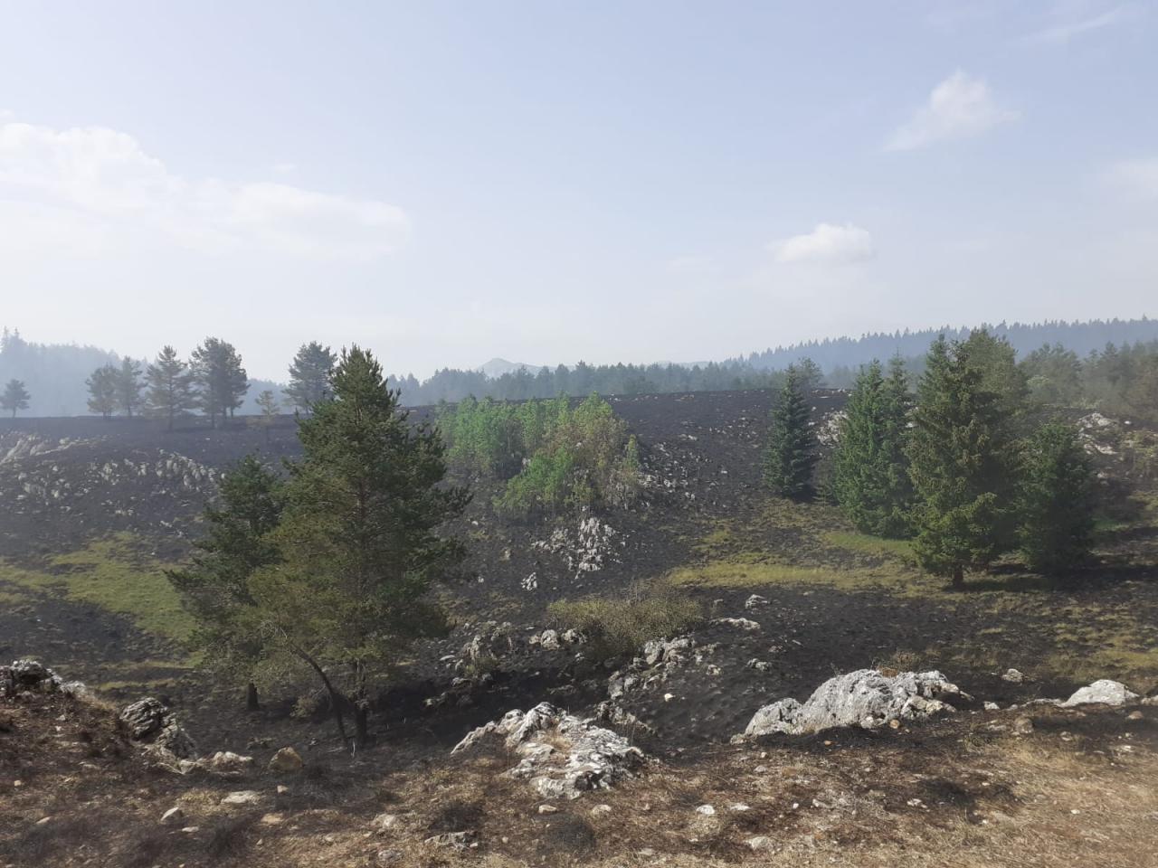 pozar-jelovaca-kupres-7-2021-2.jpg